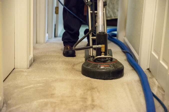 Carpet Cleaning Northern Colorado